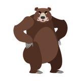 Urso irritado em seus pés traseiros Urso agressivo no backgro branco ilustração do vetor