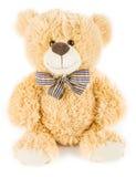 Urso macio do brinquedo fotografia de stock royalty free