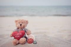 Urso-mar imagem de stock royalty free