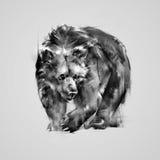 Urso marrom isolado da ilustração Imagens de Stock