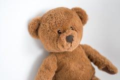 Urso marrom pequeno bonito em uma parede branca fotos de stock