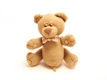Urso masculino manhoso Fotografia de Stock Royalty Free