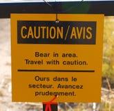 Urso na área Fotos de Stock