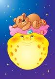 Urso na lua Imagem de Stock