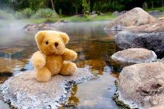Urso nas rochas Fotografia de Stock