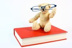 Urso no livro fotos de stock royalty free