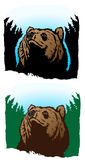 Urso pensativo Fotografia de Stock