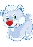 Urso polar Fotos de Stock