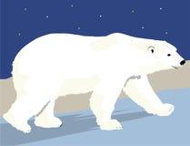 Urso polar simples Imagem de Stock