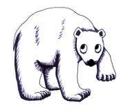 Urso polar tímido ilustração do vetor