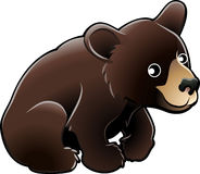 Urso preto americano Vecto bonito Imagens de Stock Royalty Free