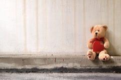 Urso só da peluche Foto de Stock