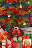 Urso sob a árvore de Natal Fotografia de Stock
