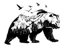 Urso tirado mão, conceito dos animais selvagens Imagem de Stock Royalty Free