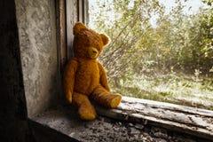Urso velho do brinquedo abandonado nas ruínas. fotos de stock