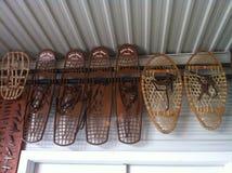 Urso velho Paw Snowshoes Fotografia de Stock