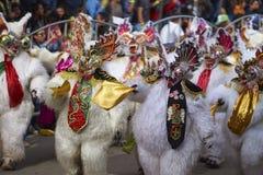 Ursos brancos no carnaval de Oruro em Bolívia Foto de Stock
