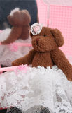 Ursos caseiros da peluche Imagem de Stock Royalty Free