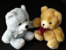 Ursos da peluche Foto de Stock Royalty Free