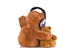 Ursos da peluche Imagem de Stock Royalty Free