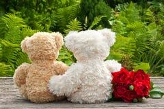 Ursos de peluche Imagem de Stock Royalty Free