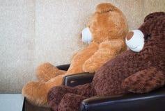 Ursos do gêmeo no sofá preto Imagens de Stock