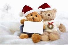 Ursos do Natal Imagem de Stock