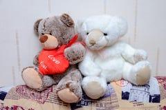 Ursos enchidos Imagens de Stock