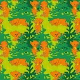 Ursos na madeira Foto de Stock