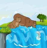 Ursos que pescam no córrego Imagem de Stock