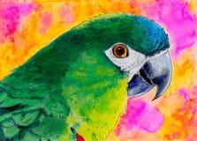 Ursprüngliche Malerei eines grünen Papageien Stockfotos