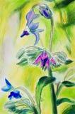 Ursprüngliche Malerei von Borageblumen vertikal Lizenzfreies Stockfoto