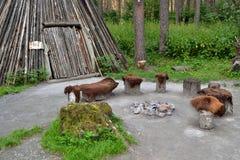 Ursprünglicher Herd Lizenzfreie Stockbilder