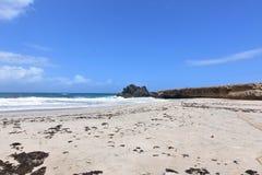 Ursprunglig avskild Andicuri strand på den östliga sidan av Aruba Arkivbild