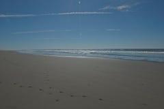 Ursprunglig strand med korsningen djura spår i slät sand Royaltyfri Foto