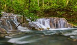 Ursprungliga vattenfall djupt i träna Fotografering för Bildbyråer