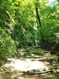 Ursvy creek in the mountains royalty free stock photo