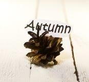 Urto di autunno Fotografia Stock Libera da Diritti