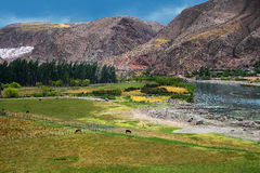Urubamba河在秘鲁 免版税库存照片