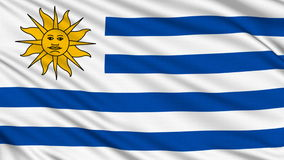 Uruguaian Flag. stock video