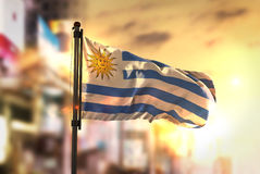 Uruguay Flag Against City Blurred Background At Sunrise Backligh Stock Photo