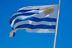 Uruguay flag flapping in wind. Reversed Uruguay flag flapping in the wind Royalty Free Stock Images