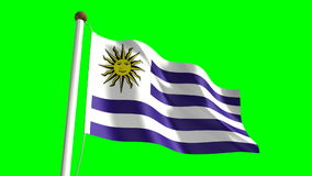 Uruguay flag. (seamless & green screen stock video footage