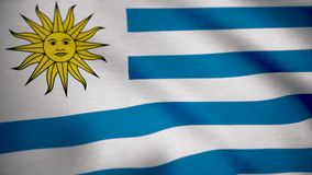 Uruguay flag on a silk drape waving. Flag of Uruguay background.  stock video footage