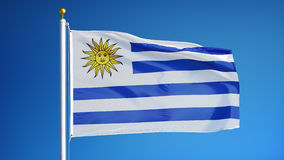 Uruguay flag in slow motion seamlessly looped with alpha. Uruguay flag waving in slow motion against clean blue sky, seamlessly looped, long shot, isolated on stock video