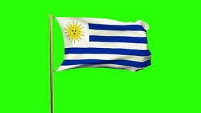 Uruguay flag waving in the wind. Green screen. Alpha matte. Loops animation stock video