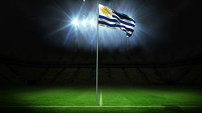 Uruguay national flag waving on flagpole. Against football pitch with spotlights and flashes stock video footage