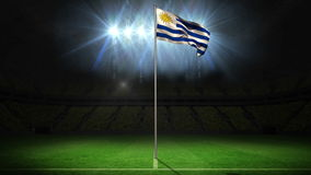 Uruguay national flag waving on flagpole. On football pitch with flashes stock video footage