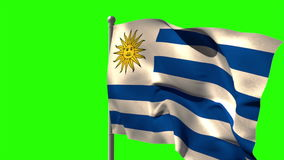 Uruguay national flag waving on flagpole. On green screen background stock video footage