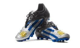 The Uruguayan flag. Painted on football boots. Isolated on white background Stock Image